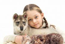 девочка с щенком и котятами